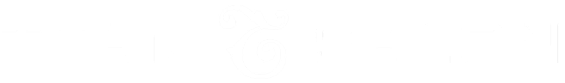 TeamSalon Logo Original